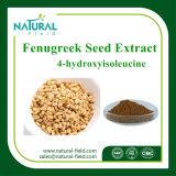Extrait courant de graine de fenugrec d'extrait de centrale de poudre de Gynesine