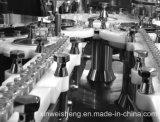 Gsz-6 groot Volume die en Machine voor (farmaceutisch) Glas en Plastic Flessen vullen afsluiten
