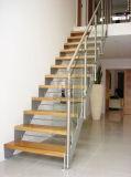 Escalera recta/escalera de interior/paso de progresión moderno de la escalera