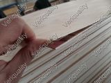 Examen de la chapa/control de calidad de piedra confiables de la chapa de la chapa QC/Flooring de Lite