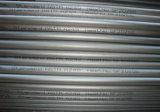 A249 Roestvrij staal Gelast Buizenstelsel ASTM