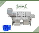 Máquina de caja automática de Alimentos de plástico limpia
