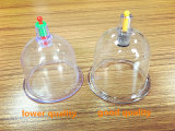 Jeu mettant en forme de tasse en plastique de Hijama de vide bon marché de la Chine