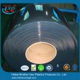 Rideau transparent en plastique Rolls en bande de PVC de soudure