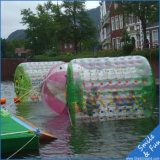 Fournir le rouleau gonflable de l'eau de 1 chambre ou de chambre 3 à vendre