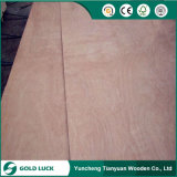 Bom preço madeira compensada da mobília de 1220 x de 2440mm para a decoração