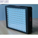 알루미늄 Shell (White 또는 검정) 600W LED Grow Light