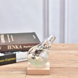 بصيلة شكل زجاجيّة إناء زهر زجاجة لأنّ [ميكرولندسكهفت] زخرفة