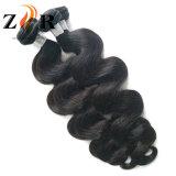 Cabelo natural não processado do brasileiro do Virgin da venda por atacado do Weave do cabelo humano