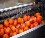 Sbucciatrice di lavaggio a spazzole elettrica della patata dolce Lj-1000