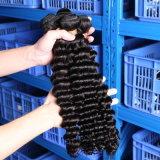 Großhandelsunverarbeitetes lockiges Haar der Jungfrau-9A brasilianisch/Malaysian/peruanische/indische Menschenhaar-Extension