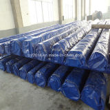 ASTM A213/A312 316L de Pijp van het Roestvrij staal