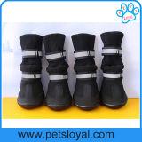 مصنع 3 فصل محبوب جزمة كلب أحذية مع صوف قطريّة