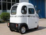 Triciclo eléctrico de la cabina llena mini con automático