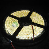 nueva alta SMD2835 LED luz de tira flexible brillante de los 240LEDs/M 22-24lm/LED