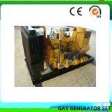 Proyecto llave en mano de la planta de energía de biomasa generador eléctrico de alimentación de gas