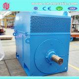 Yr/Yrkk grande motor de indução de alta tensão