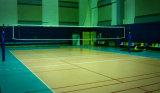 8つのカラー専門PVCは屋内バレーボールゲームのための床を遊ばす
