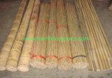 Bamboo Poles для завода сада