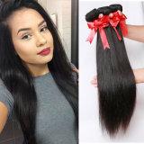 100%の人間の毛髪の拡張毛のWeft絹のまっすぐ