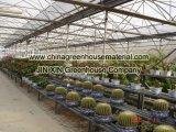꽃 설치를 위한 온실