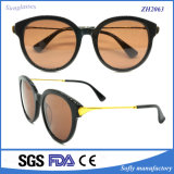 Fashion High Quality Latest Design Lunettes de soleil populaires en acétate Round