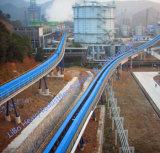 Hightech- gebogene Langstreckenförderanlage mit CER Bescheinigung