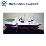 Modelo personalizado de la nave del envase modificado para requisitos particulares