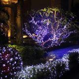 옥외가 의 정원 레이저 광 크리스마스에 의하여 LED 점화한다