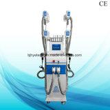 기계 뚱뚱한 손실 체중 감소 장비를 체중을 줄이는 직업적인 Cryolipolysis