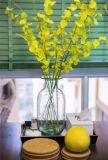 Glasvase für Ausgangs-und Hochzeits-Dekoration