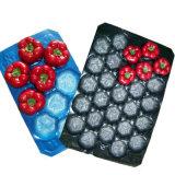Cassetti impaccanti a gettare di plastica della visualizzazione della frutta e della verdura dell'animale domestico dei pp in supermercati