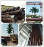 De gecamoufleerde Monopole Toren van het Staal van de Telecommunicatie van de Palm