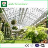 China-Lieferanten-niedrige Kosten-Glasgewächshaus für Werbung