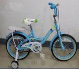 자전거가 새로운 상한 다채로운 여행에 의하여 농담을 한다