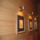 Écologique Wood-Plastic étanche panneau mural composite/WPC Revêtement mural
