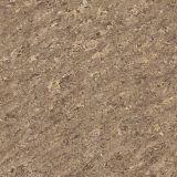 بلّوريّة خزي [فلوور تيل] مع 600*600 [درك كلور] أرضيّة