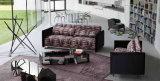 Кровать софы домашней мебели многофункциональная