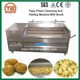 Máquinas para processamento de produtos hortícolas Papa limpezas de batata e máquina de rebentamento com escova