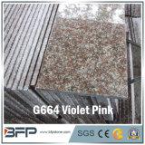 옥외 조경을%s 자연적인 화강암 정원 도와 조약돌/포석