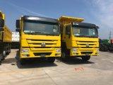 Sinotruk HOWO 8x4のダンプカートラック(336P EUROIII)