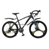 Lega Sh-Sp111 che corre bici con velocità 21
