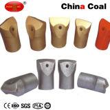 Morceau de foret charbonnier de roche de burin de la Chine