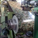 JIS 3321 Cglch Tarnung strich Galvalume-Stahlring für Amry vor