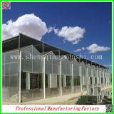La Cina Cheapest Galvanized Caldo-DIP Steel Structure Greenhouses con Hydroponic Grow Systems