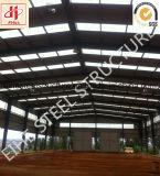 Almacén ambiental y arreglo para requisitos particulares clasificado de la estructura de acero