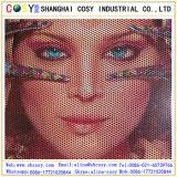 Één Zij Visueel Vinyl, Unidirectioneel Vinyl van de Visie