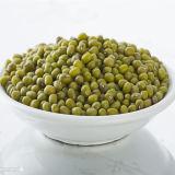 (빨강 노랗고 또는 녹색 또는 백색 또는 까만) 중국에서 고품질 마른 콩