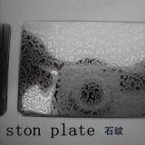 De In reliëf gemaakte Plaat van het Staal ASTM Stainelss Steen