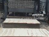 [1220244012مّ] نوعية رخيصة [مرين كنستروكأيشن] خشب رقائقيّ